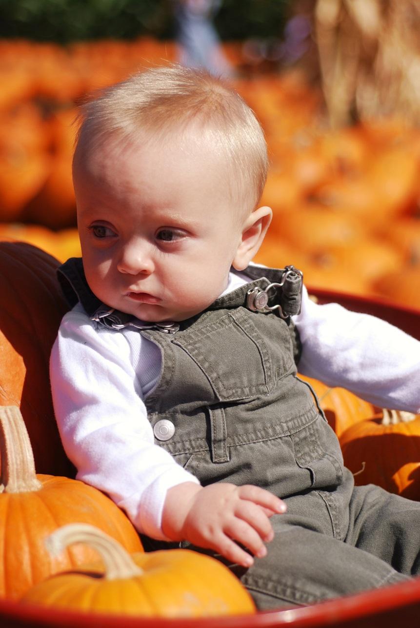 Pumpkin Patch, Weekend fun